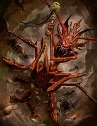 Edvart le Dragon Rouge Fourmi10