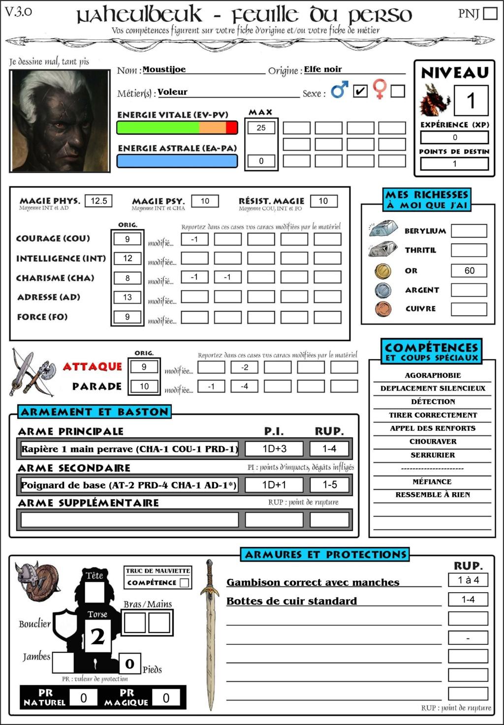 Présentation Moustijoe, l'elfe noir voleur Nbk-fi13