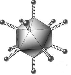 Коронавирус: как от него защититься и не поддаться панике? A711