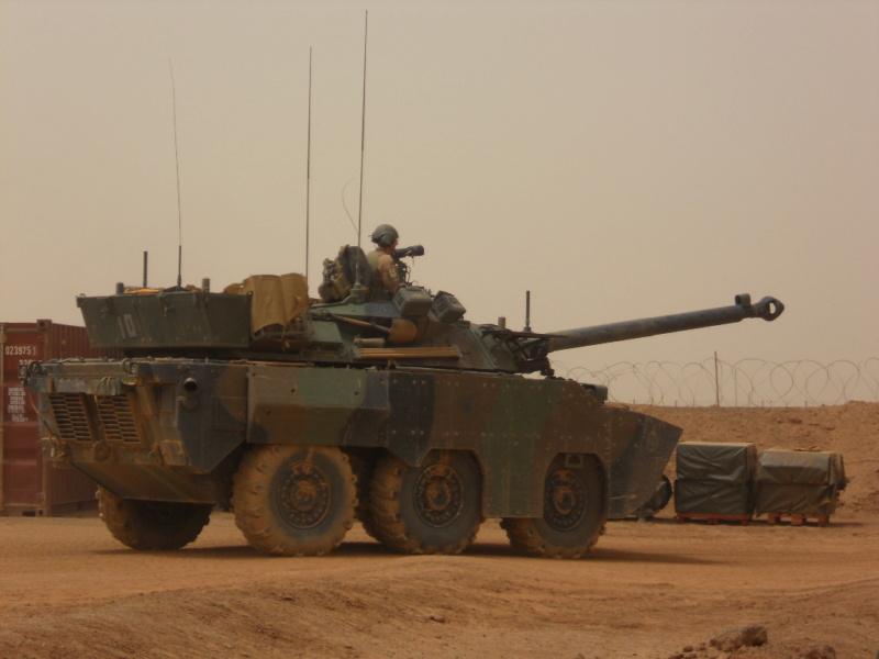 AMX 10 RCR SEPAR Dscn2387