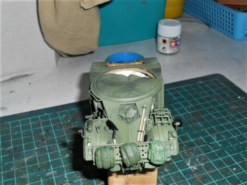 AML 90 tiger model - Page 2 Dscn2391