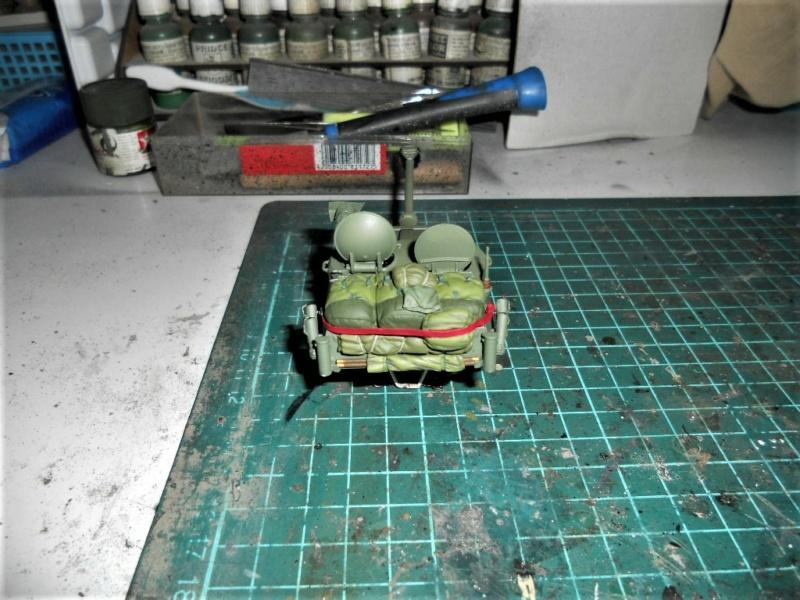 AML 90 tiger model - Page 2 Dscn2394