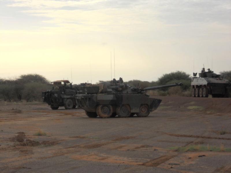 AMX 10 RCR SEPAR Dscn2411