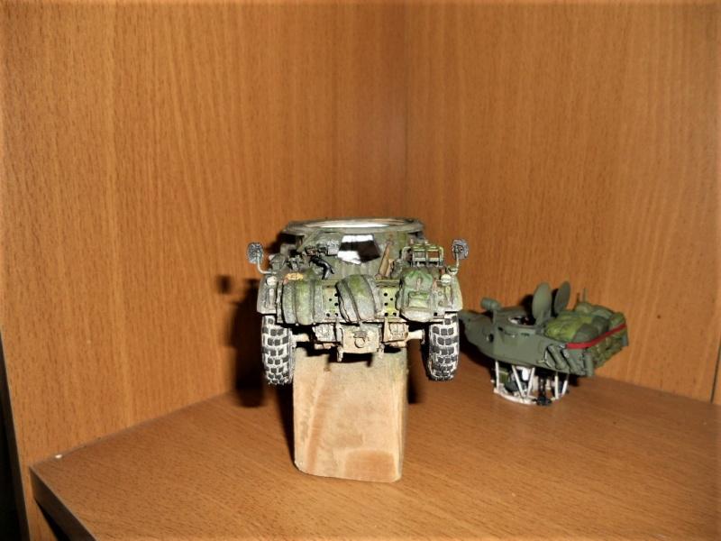 AML 90 tiger model - Page 2 Dscn2420