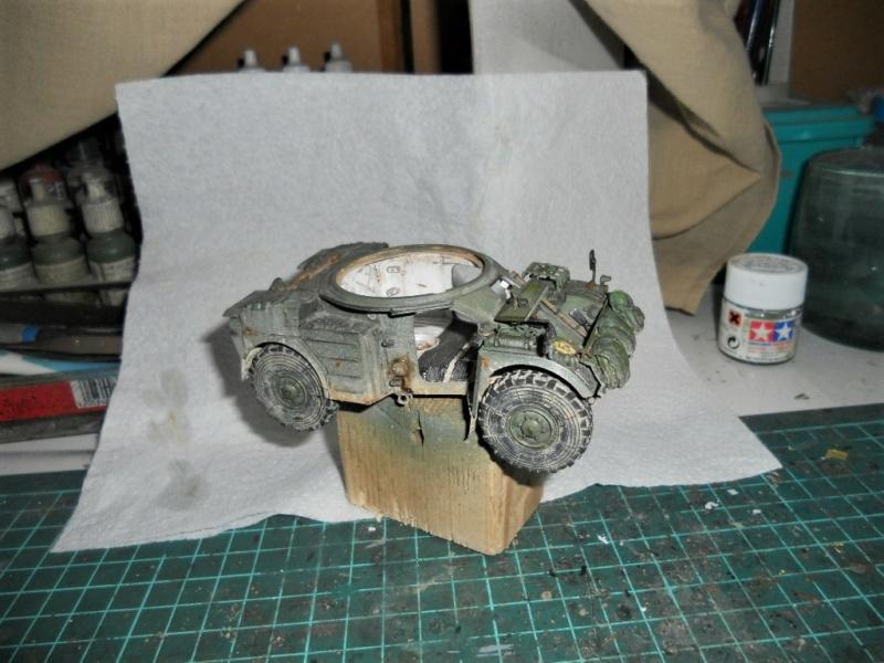 AML 90 tiger model - Page 2 Dscn2421