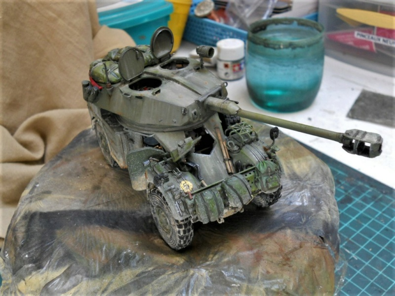 AML 90 tiger model - Page 2 Dscn2427