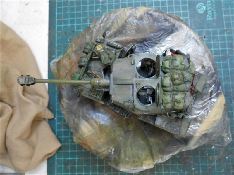 AML 90 tiger model - Page 2 Dscn2430