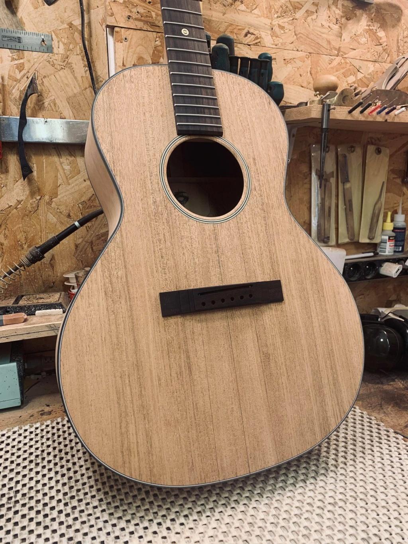 Ma future Blind Guitare ! - Page 2 Cheval10