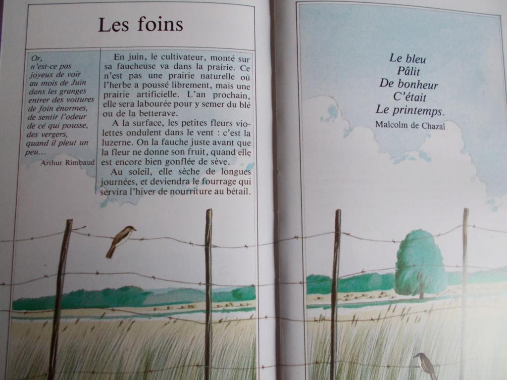 Georges Lemoine Dscn0183
