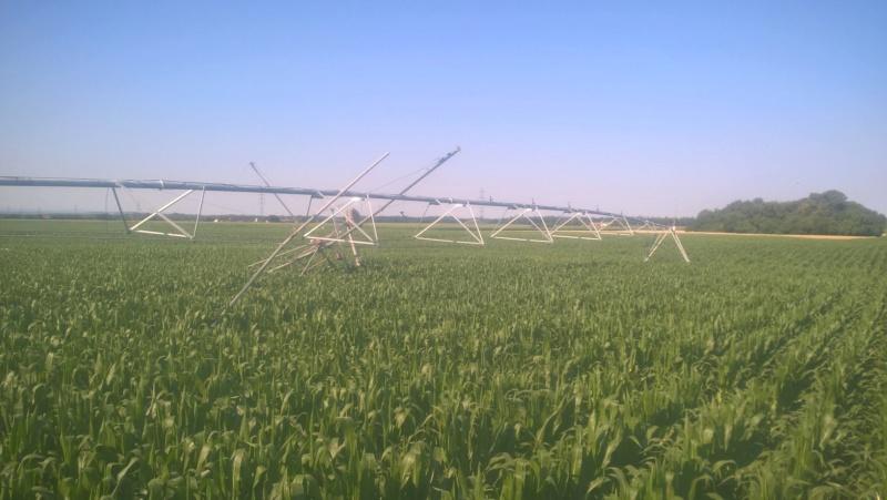 problème sur pivot d'irrigation Wp_20194