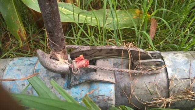 Irrigation 2020 Wp_20295