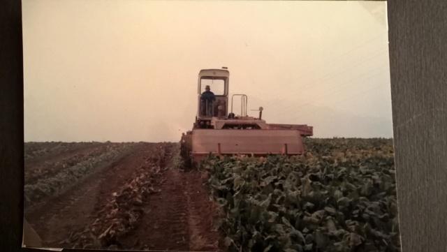L'historique de vos tracteurs  - Page 4 Wp_20313