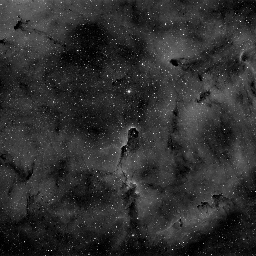 Zoologie astronomique... En noir et blanc 2018-110