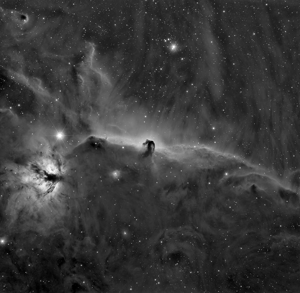 Zoologie astronomique... En noir et blanc 2018-111