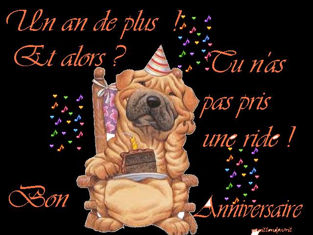C'est l'anniversaire de Daniel S le Vendéen  3edaba10
