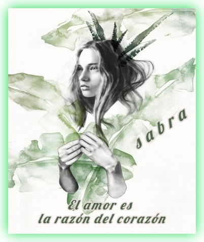FIRMAS SABRA NUEVAS III 1bd36010