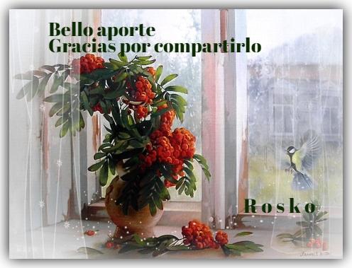 FIRMAS Y SALUDOS DE USUARIOS. Rosko Rosko10