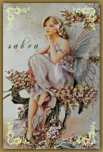 FIRMAS DE SABRA VINTAGE Vtg22210