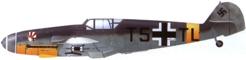 Les yeux de la Luftwaffe part III Bf_10914
