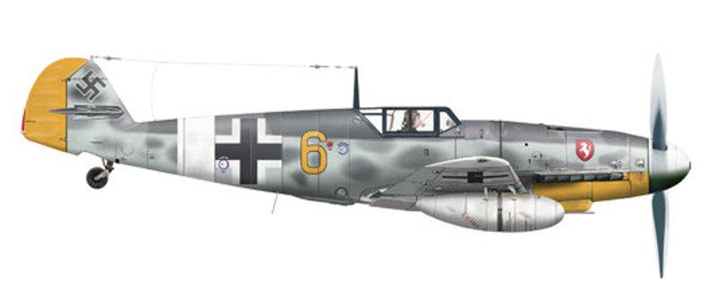 Les yeux de la Luftwaffe part III Bf_10915