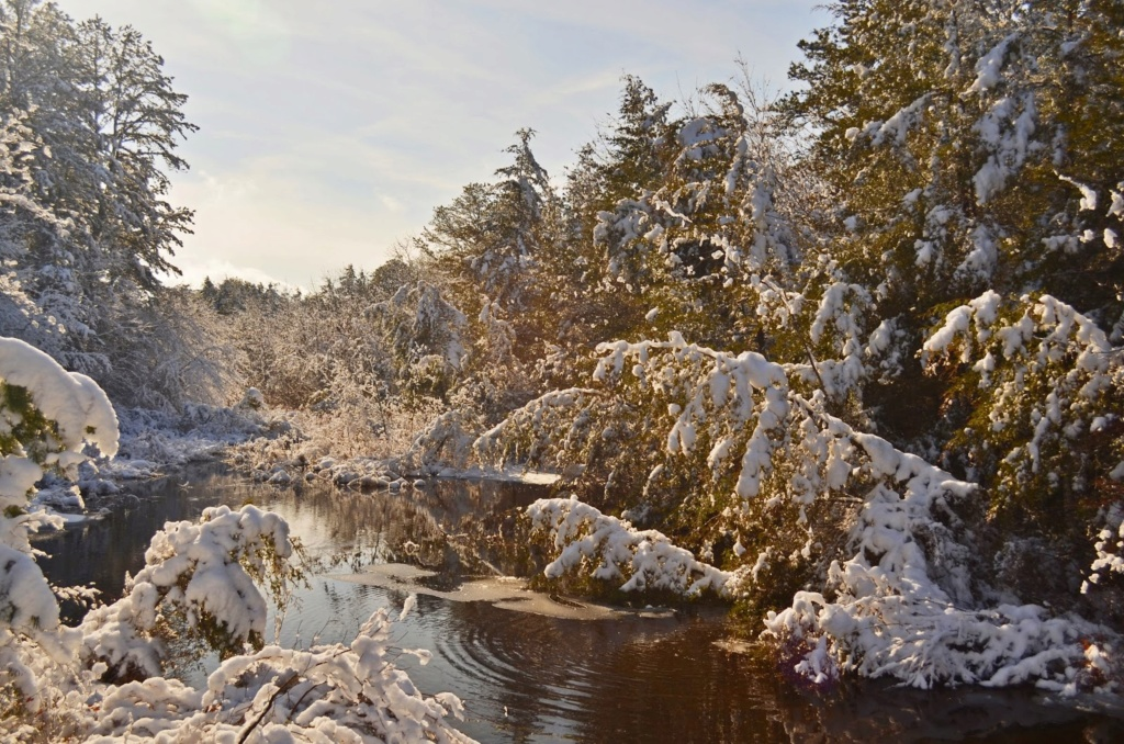 Zimski pejzaži-Winter landscapes - Page 5 026_ed10