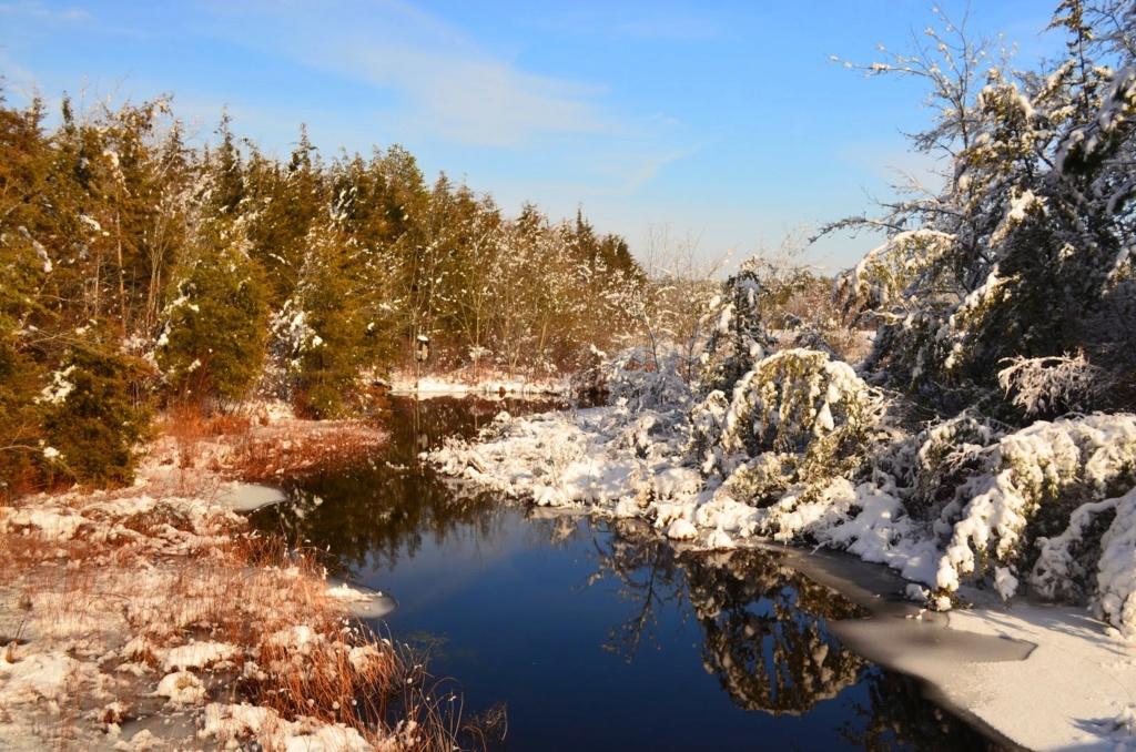 Zimski pejzaži-Winter landscapes - Page 5 033_ed10