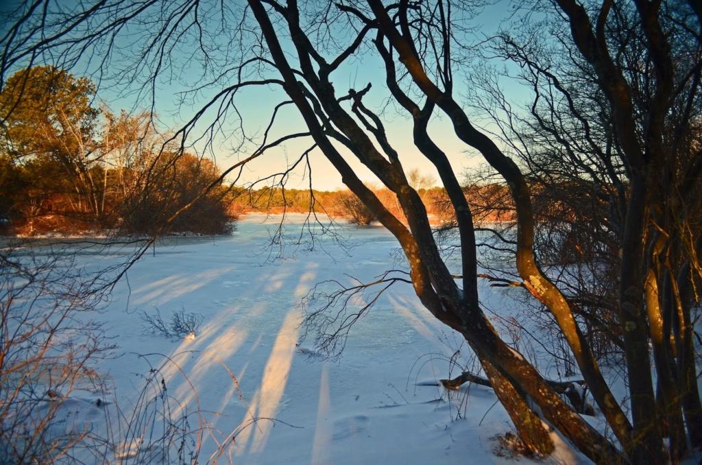 Zimski pejzaži-Winter landscapes - Page 6 071_ed10