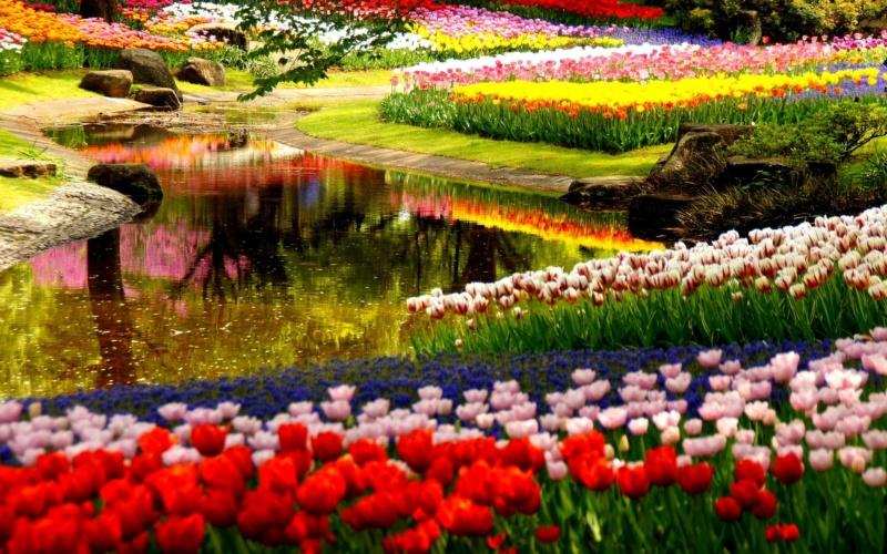 Parkovi i vrtovi - Page 37 11839011