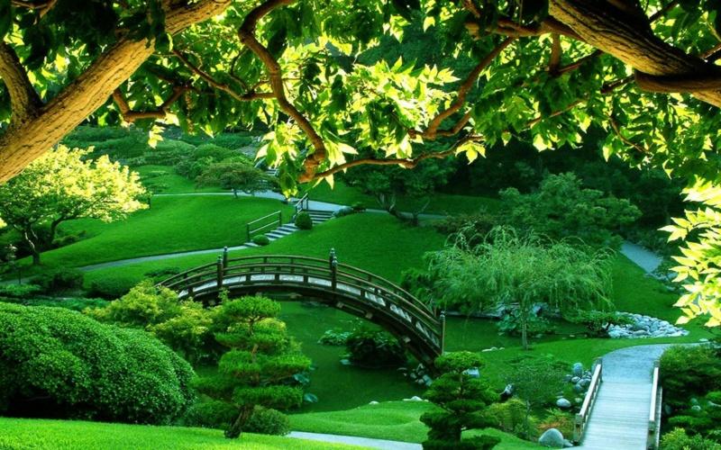 Parkovi i vrtovi - Page 37 11839710