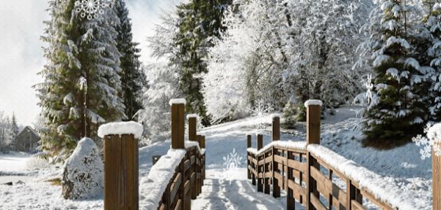 Zimski pejzaži-Winter landscapes - Page 2 14488210
