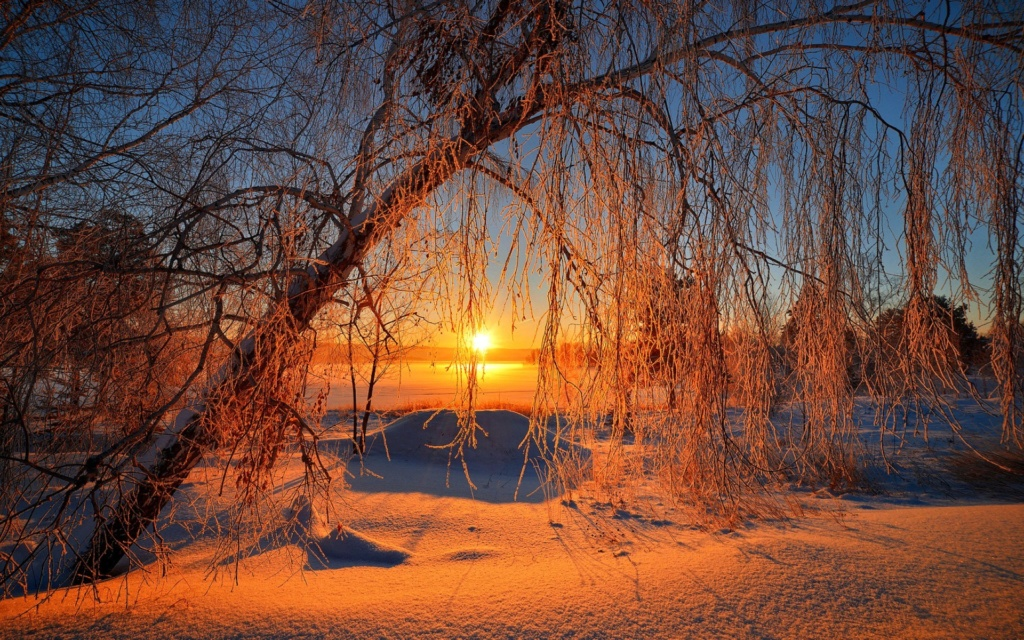 Zimski pejzaži-Winter landscapes - Page 15 15228g10