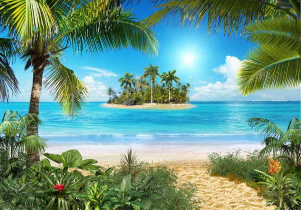 More,jezero,reka...plaža,palma... - Page 29 2279210