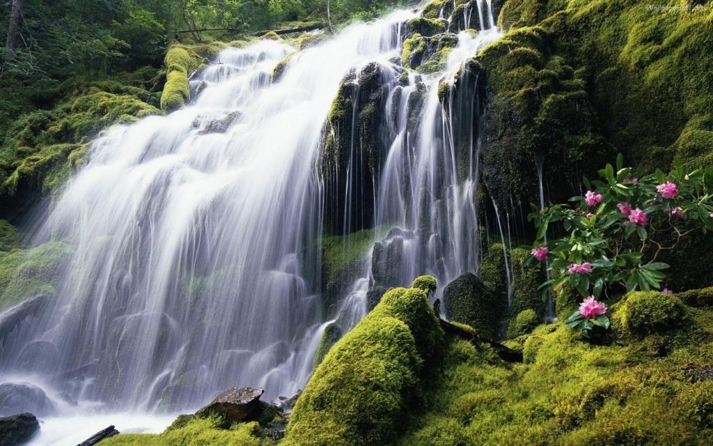 Vodopadi i slapovi  - Page 29 2363_w10