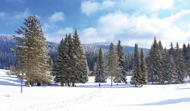 Zimski pejzaži-Winter landscapes - Page 21 2420ta10