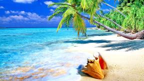 More,jezero,reka...plaža,palma... - Page 34 257110