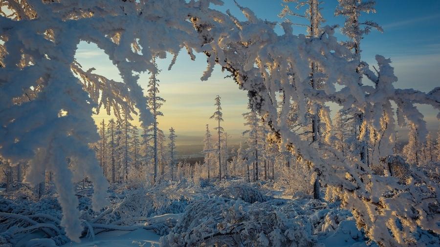 Zimski pejzaži-Winter landscapes - Page 4 27291310