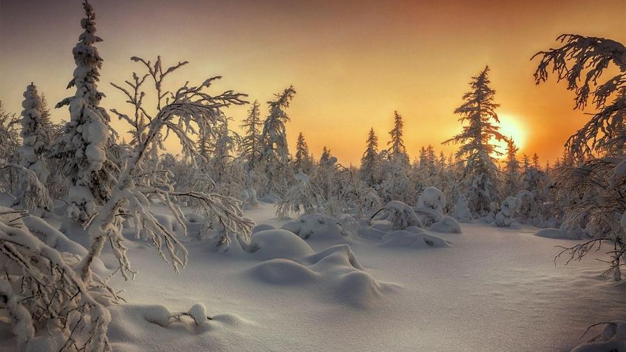 Zimski pejzaži-Winter landscapes - Page 4 28572810