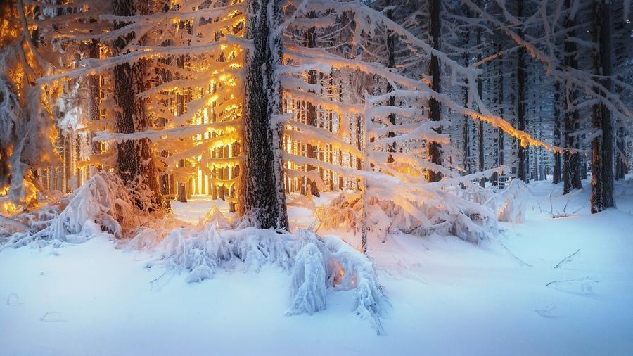 Zimski pejzaži-Winter landscapes - Page 4 28586010
