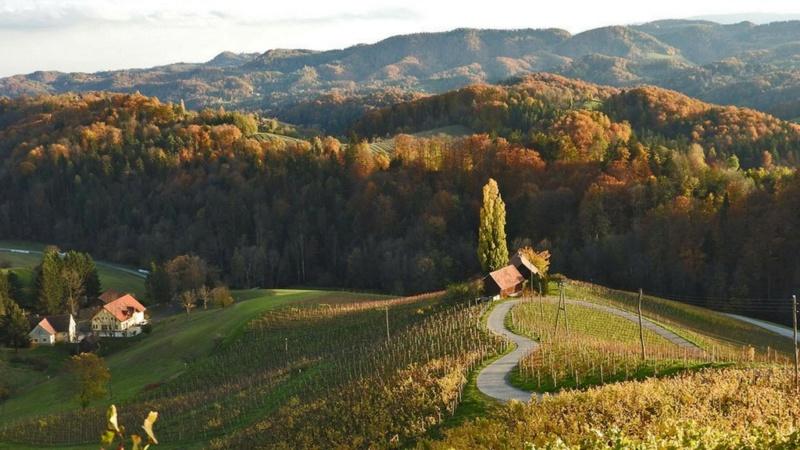 Landscape-pejzaži - Page 25 318