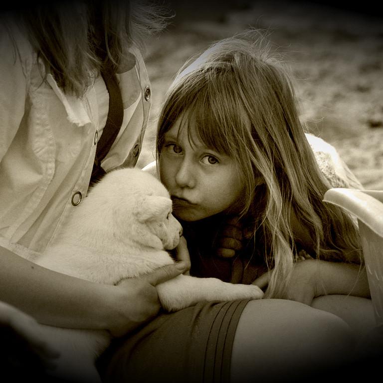 Deca i životinje - Page 20 35808510