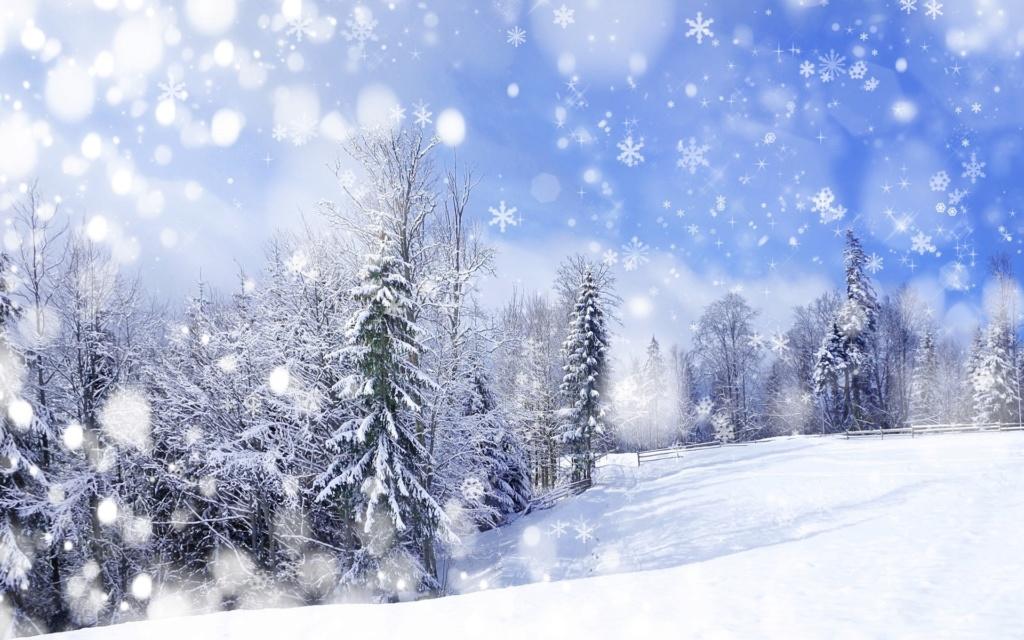 Zimski pejzaži-Winter landscapes - Page 15 37817-10