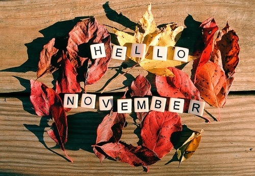 hello november 45021-10