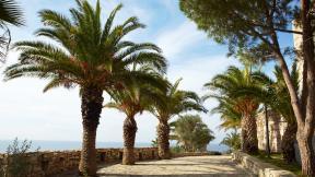 More,jezero,reka...plaža,palma... - Page 34 45910