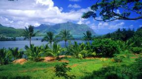 More,jezero,reka...plaža,palma... - Page 34 46810