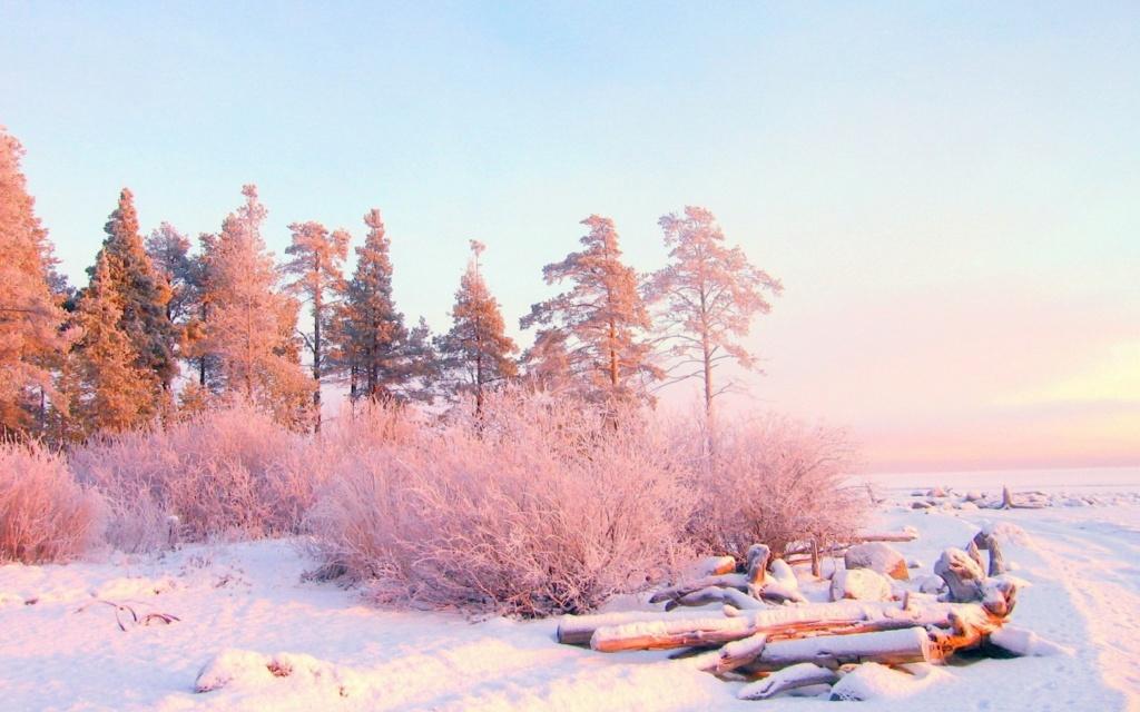 Zimski pejzaži-Winter landscapes - Page 13 49708-10