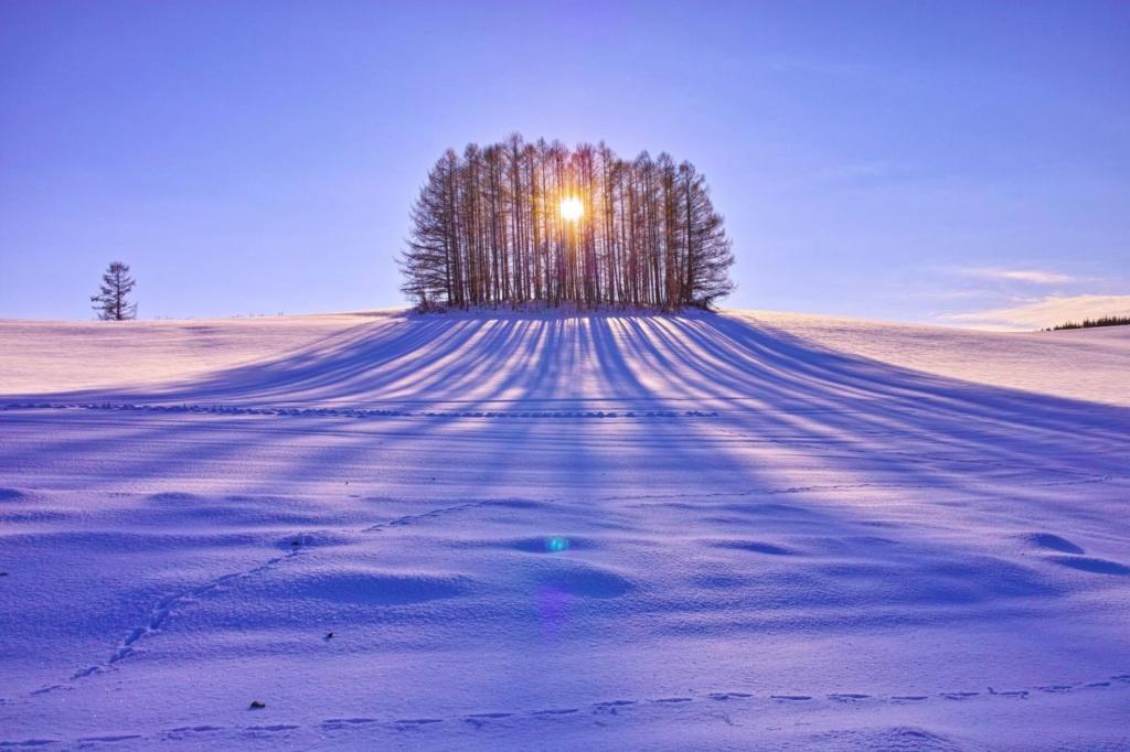 Zimski pejzaži-Winter landscapes - Page 22 4acbd110