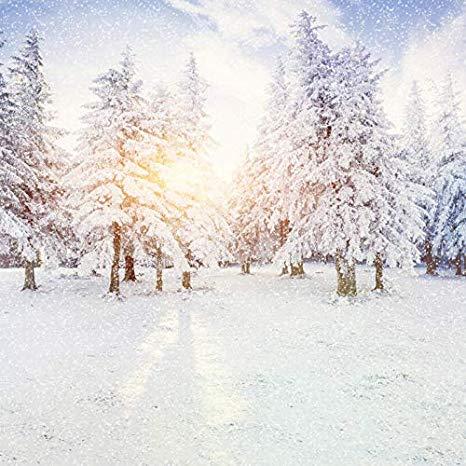 Zimski pejzaži-Winter landscapes - Page 24 51p5fo10