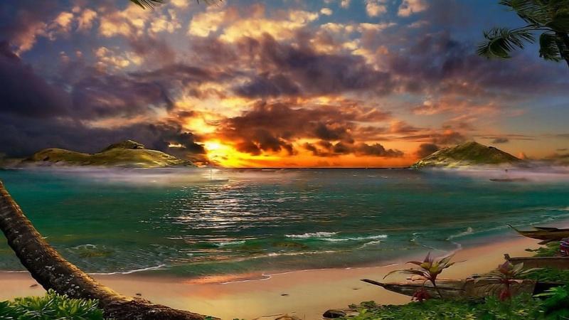 More,jezero,reka...plaža,palma... - Page 35 54321410
