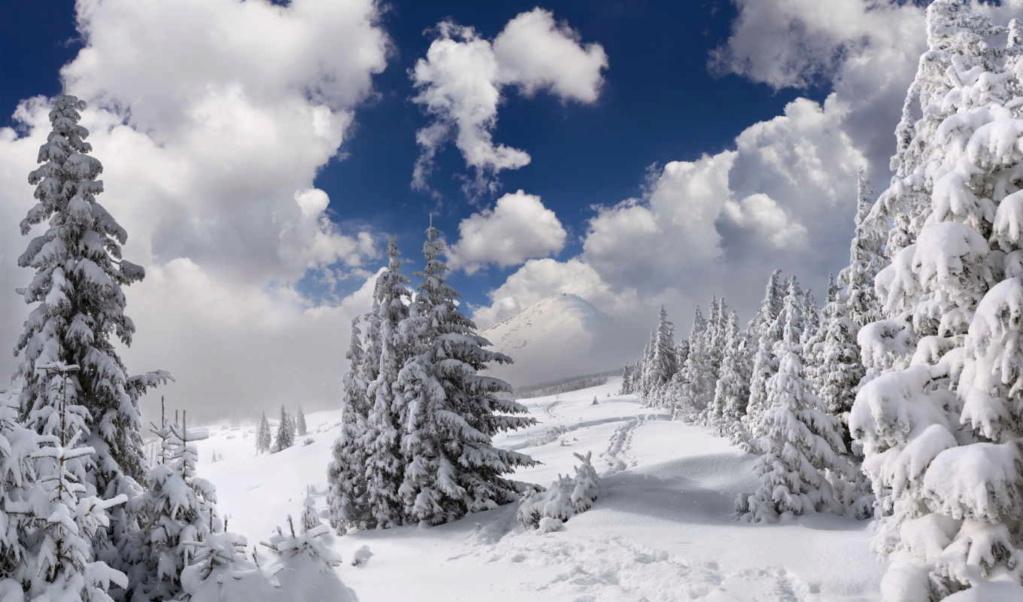 Zimski pejzaži-Winter landscapes - Page 2 59350310