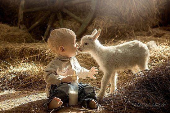 Deca i životinje - Page 19 69766910